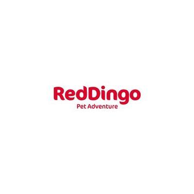 Red Dingo GmbH